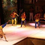 Brazilian Capoeira Dancing trips. Travel. Learn. Dance.