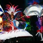 Samba School Flag Presenters Dancing trips. Travel. Learn. Dance.